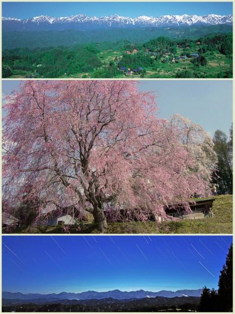 ○小川村HP、信州フォレストワークHPからお借りしました